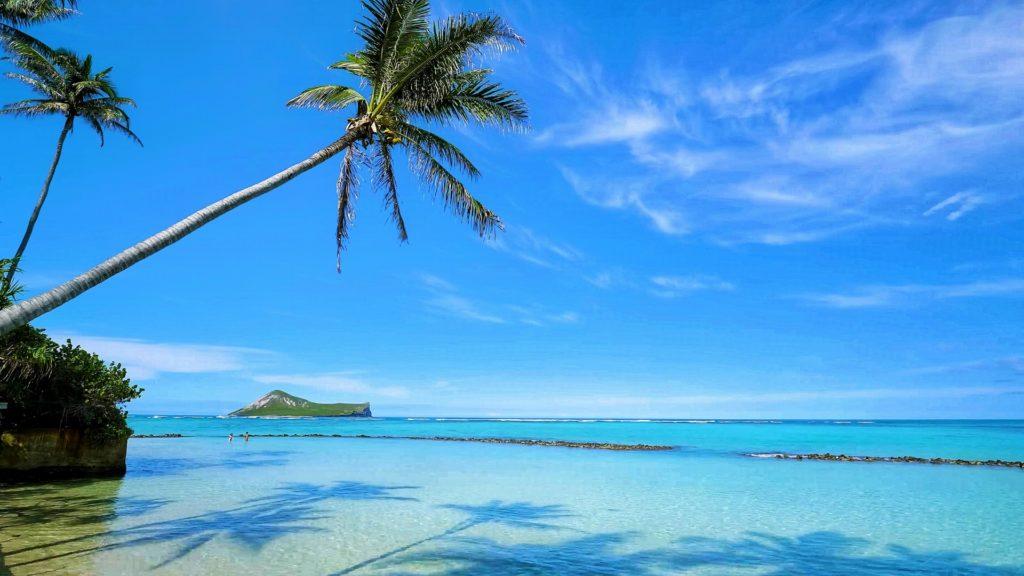 沖縄移住生活の必需品・必要なもの
